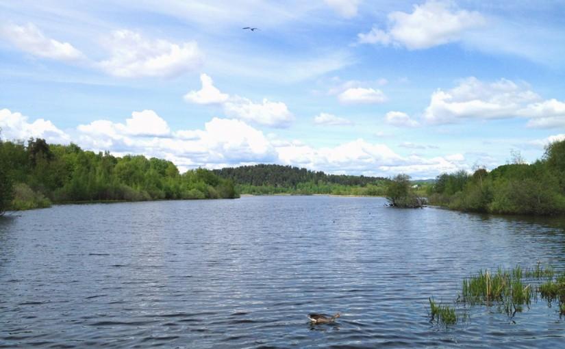 Strolling along Østensjø Lake